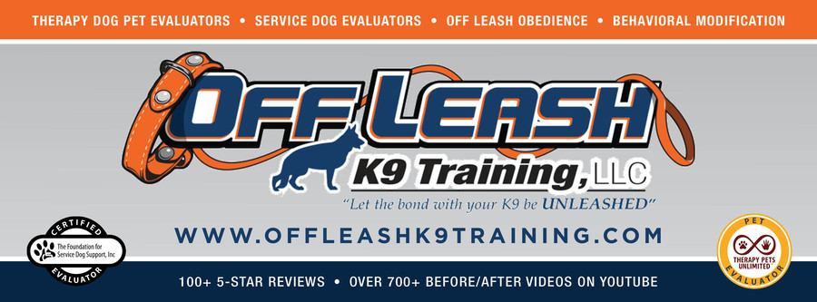 Stamford Connecticut Dog Trainers